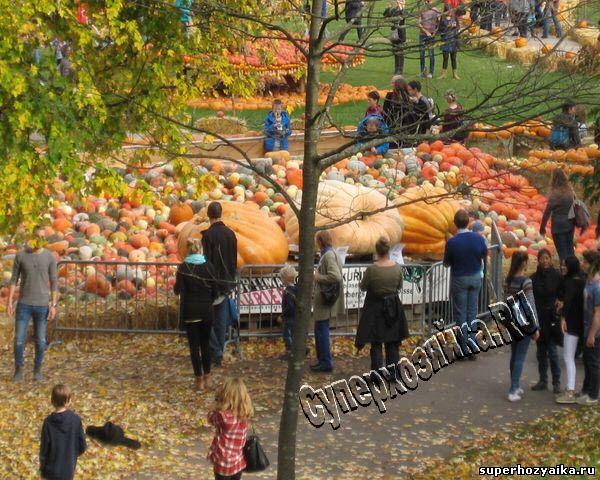 Праздник тыквы в парке Людвигсбурга