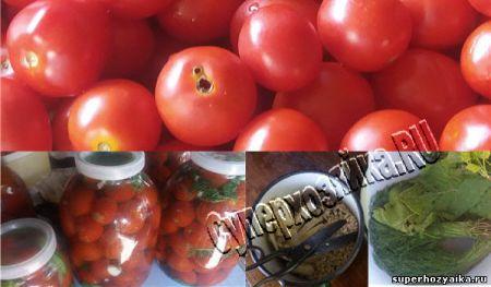 Специи для консервированных помидоров