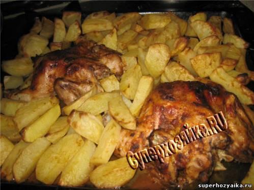 цыплята табака в духовке с картошкой
