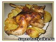 Курица с картошкой. Рецепт цыпленка, запеченного с картофелем в духовке